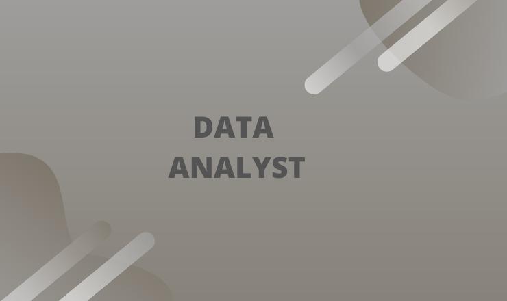 Data analyst training